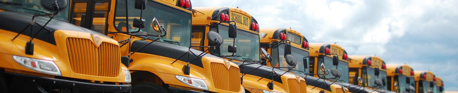 school bus companies